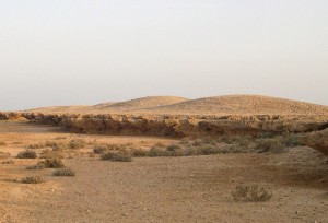 Fig. 1. Shell mounds in Janaba West in 2006. Photo: A. Al Zahrani